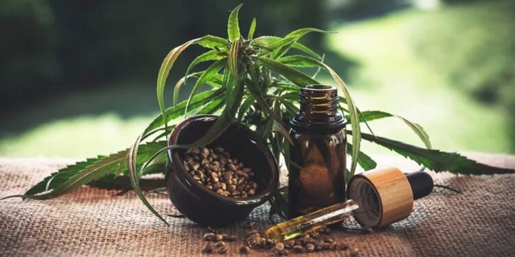 Why hemp oil is good for dogs