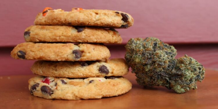 Mistakes to avoid when cooking with cannabis