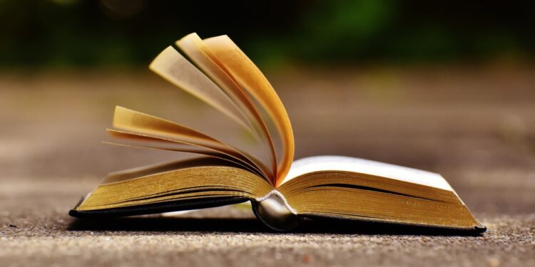 Top 20 most literate countries in the world