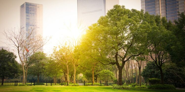 Top 20 greenest cities in the world