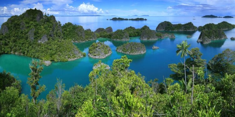 Top 20 highest islands in the world
